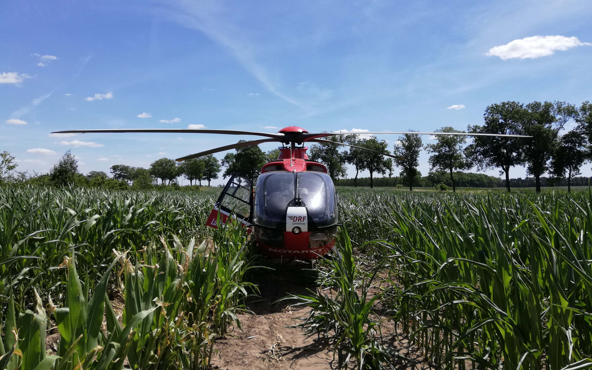 … mitunter sind auch Landungen im Grünen dabei. Über 1.300 Einsätze im Jahr leistet die Station, in 95 Prozent der Fälle ist der Hubschrauber dabei in der Notfallrettung als schneller Notarztzubringer unterwegs.
