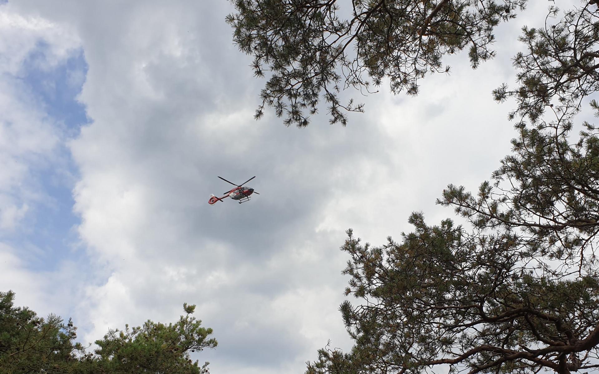 Anflug von unserem Hubschrauber über den Pfälzer Wald