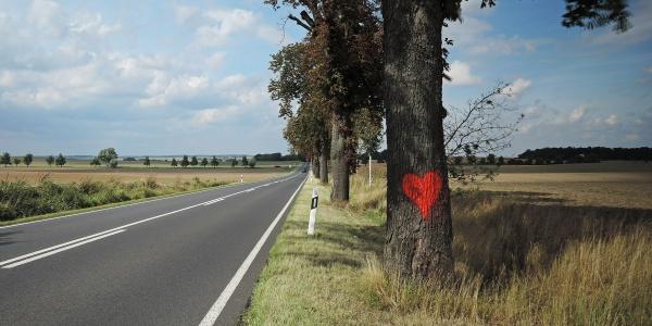 Ein rotes Herz als Symbol für Annas Zuversicht.