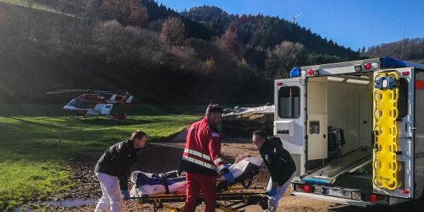 Immer wieder werden Landwirte beim Umgang mit Rindern verletzt. So auch ein Bauer im Schuttertal im Schwarzwald, der an Bord von Christoph 54 in eine Klinik geflogen werden musste.