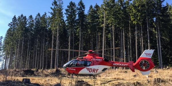 Landung im Wald durch Christoph 37, als ein Radfahrer nach einem Sturz am Brock schnelle notärztliche Hilfe benötigte.
